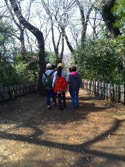 生田緑地の歩行に行きました